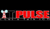 ITpulse_2_170x100-removebg-preview